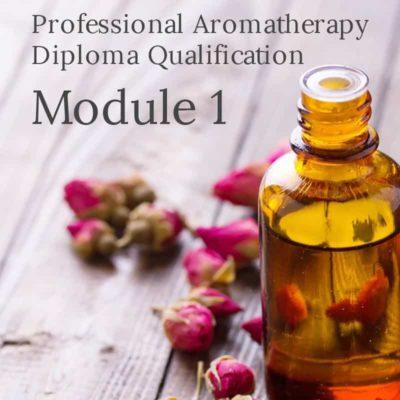 Professional Aromatherapy Diploma Qualification module 1